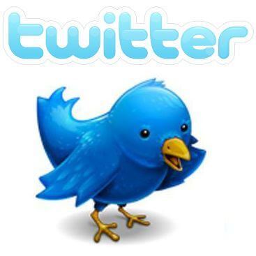Gimp - Twitter