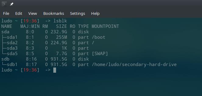 Linux lsblk result